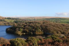 Dartmoor Autumn Colours. Autumn arrives in Burrator and Sheepstor Dartmoor National Park Stock Image