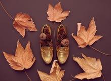 Autumn Arrives.Fashion Minimal.Retro.Fall Leaves Royalty Free Stock Photos