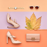 Autumn Arrives. Fashion Lady Minimal. Fall Leaves. royalty free stock photos