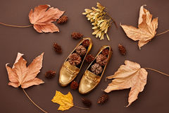 Autumn Arrives.Fashion Minimal.Retro.Fall Leaves Stock Image
