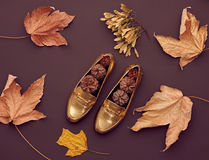 Autumn Arrives.Fashion Minimal.Vintage.Fall Leaves Royalty Free Stock Photography