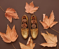 Autumn Arrives.Fashion Minimal.Vintage.Fall Leaves Royalty Free Stock Photo