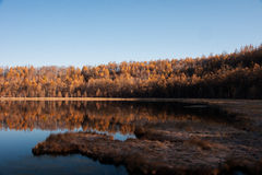 Autumn at Arshan, China. The autumn scenery from China's Inner Mongolia Stock Photos