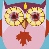 Autumn art portrait of a comic owl Stock Photo