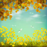 Autumn Artistic Drawing Image stock