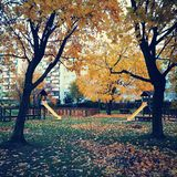 Autumn. Artistic look in vintage vivid colours. Royalty Free Stock Image