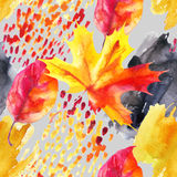 Autumn ash, maple leaf on watercolour textured background. Royalty Free Stock Photography