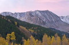 Autumn Aspen, Colorado. Autumn Landscape Aspen, Colorado, USA dawn stock image