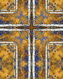 Autumn aspens cross. Kaleidoscope cross from photo of tall aspens in autumn, Colorado Stock Photo