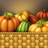 Autumn assorted pumpkins in wicked wooden basket, seasonal harvest illustration Stock Photography