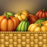 Autumn assorted pumpkins in wicked wooden basket, seasonal harvest illustration. Thanksgiving or Halloween Stock Photography
