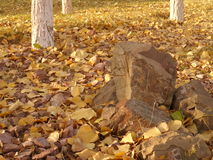 Autumn. Astana, some stones in the park near golden leaves Stock Image