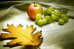 Autumn atmosphere Royalty Free Stock Photography
