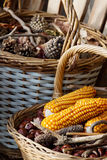 Autumn atmosphere. Autumn decorated baskets on a bench Royalty Free Stock Images