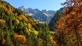 Autumn atmosphere in the Allgaeu Royalty Free Stock Image