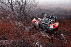 Autumn ATV   Stock Image