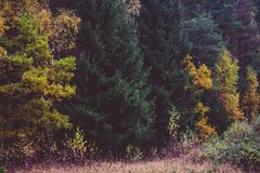 Autumn, Autumn, Colours, Countryside Royalty Free Stock Images