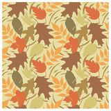 autumn b leaves pattern Obrazy Stock