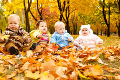 Autumn babies Royalty Free Stock Photos