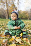 Autumn baby. Little boy sitting on autumn leaves Royalty Free Stock Images