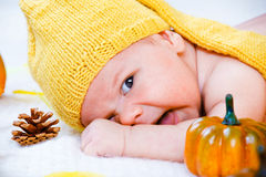 Autumn baby Stock Image