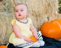 Autumn Baby Stock Photography