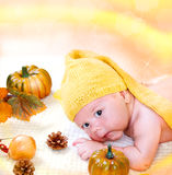 Autumn baby boy Royalty Free Stock Photo