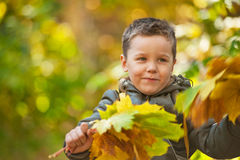 Autumn baby boy Royalty Free Stock Photography