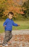 Autumn baby boy Stock Image
