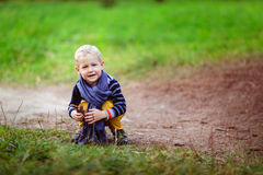 Autumn baby boy playing with cones, collect cones in the woods Royalty Free Stock Photo