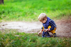 Autumn baby boy playing with cones, collect cones in the woods Stock Photography