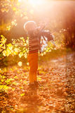 Autumn baby boy  under a tree throwing yellow leaves Stock Image