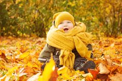 Autumn Baby on Fall Maple Leaves Outdoors. Happy Little Child in Autumn Park royalty free stock photography