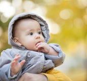Autumn Baby Portrait Photos libres de droits