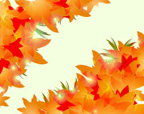 Autumn back с. Autumn floral leaf golden abstract backgound Stock Photography