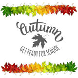 Autumn back to school vector illustration, colorful leaves Stock Photo