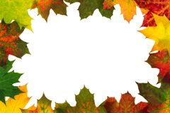 Autumn backdrop - frame composed of colorful autumn leaves Stock Images