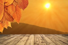 Autumn backdrop with wooden terrace Stock Photos