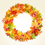 Autumn backgroun. Wreath of leaves Stock Photo