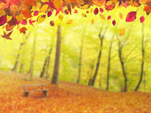 Autumn Background 1 Royalty Free Stock Photography