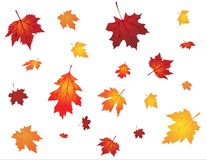 Autumn background. Template with leaves stock illustration