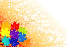 Autumn background. With many leafs Royalty Free Stock Photo