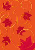 Autumn background. Red background with flying maple leaf Stock Photos