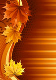Autumn background. Vector illustration - autumn leaves background Royalty Free Stock Images