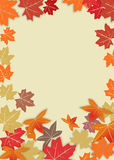 Autumn background. Autumn leafs for background Royalty Free Stock Photography