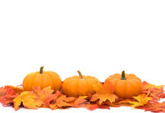 Autumn background Royalty Free Stock Photos