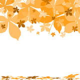 Autumn background. With chestnut leaves Royalty Free Stock Photos