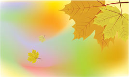 Autumn Background. Leaves falling in the autumn vector illustration