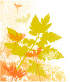 Autumn background. Autumn flowers background with texture Stock Photo
