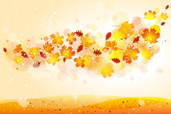 Free Autumn Background Royalty Free Stock Photography - 21323637